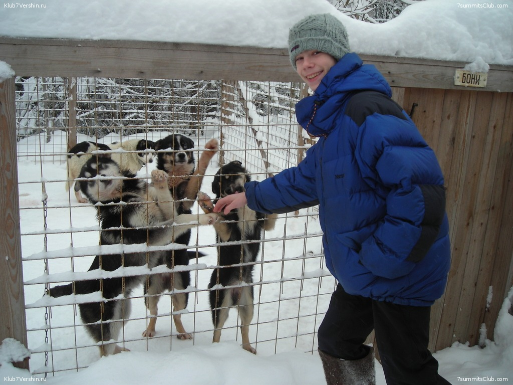 Karelia. Sled Dogs Weekend, photo 13