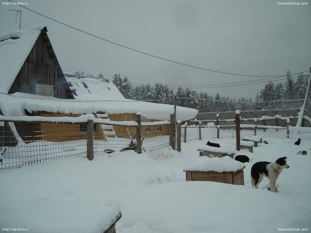 Karelia. Sled Dogs Weekend, photo 14