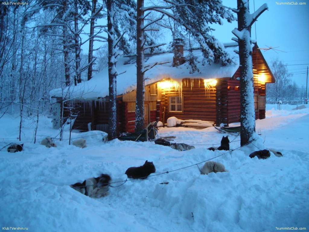 Karelia. Sled Dogs Weekend, photo 15