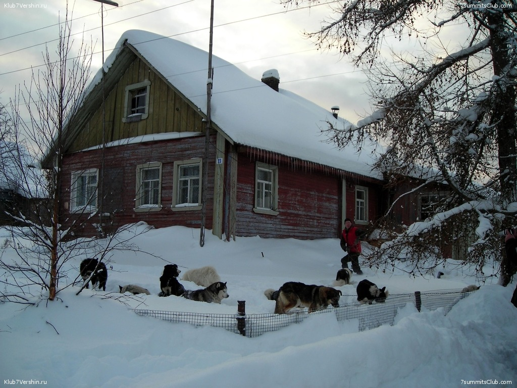 Karelia. Sled Dogs Weekend, photo 25