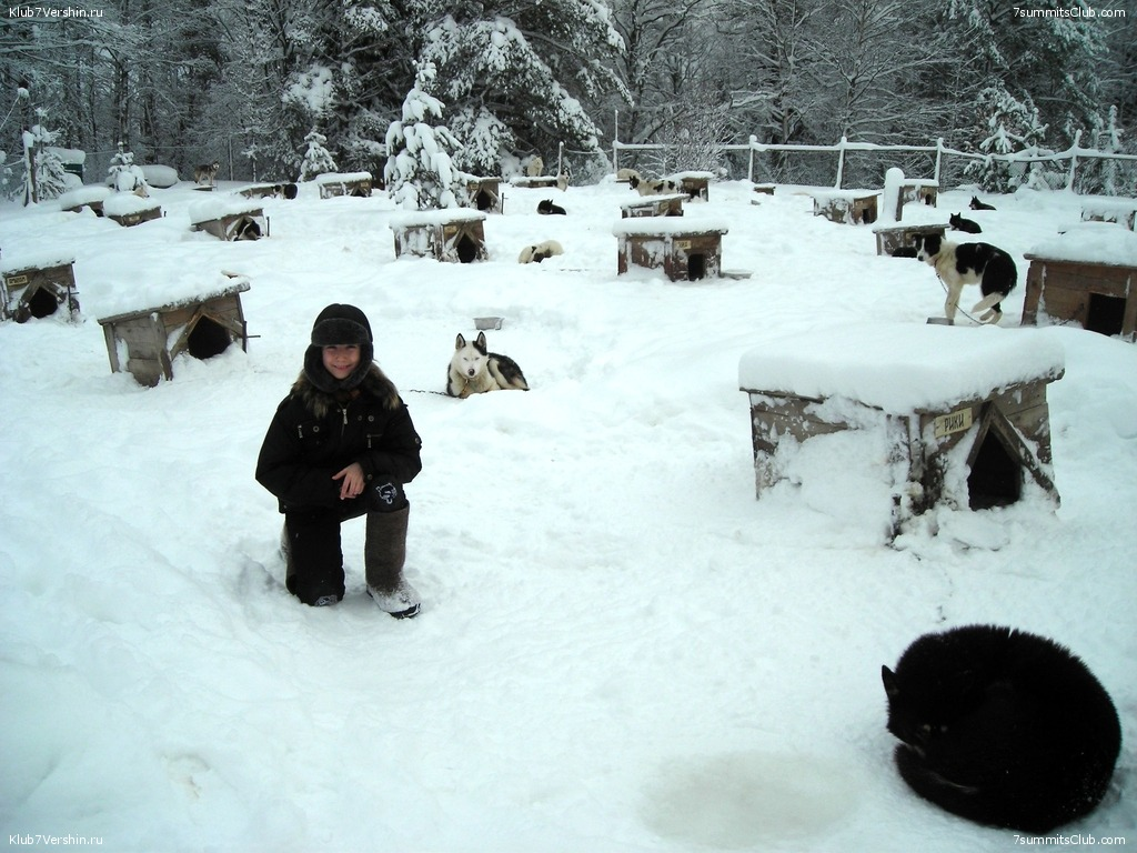 Karelia. Sled Dogs Weekend, photo 31