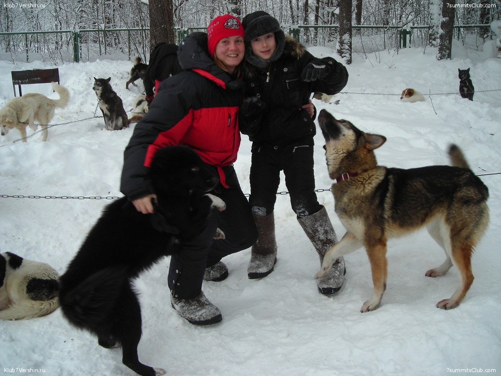 Karelia. Sled Dogs Weekend, photo 34