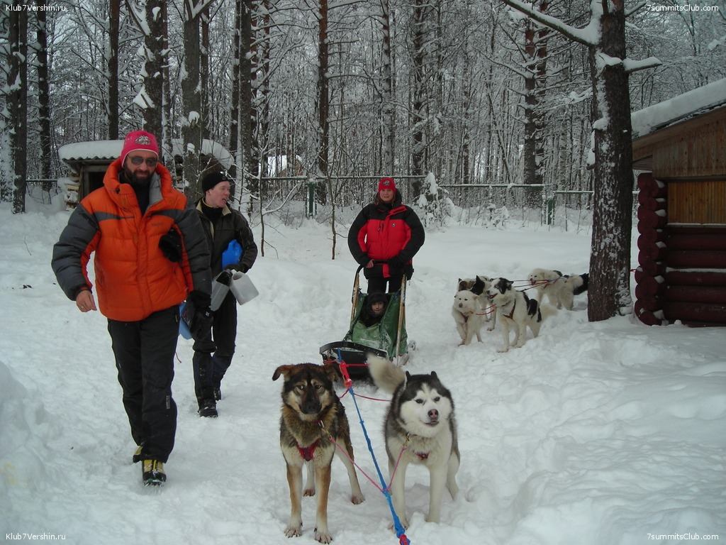 Karelia. Sled Dogs Weekend, photo 38