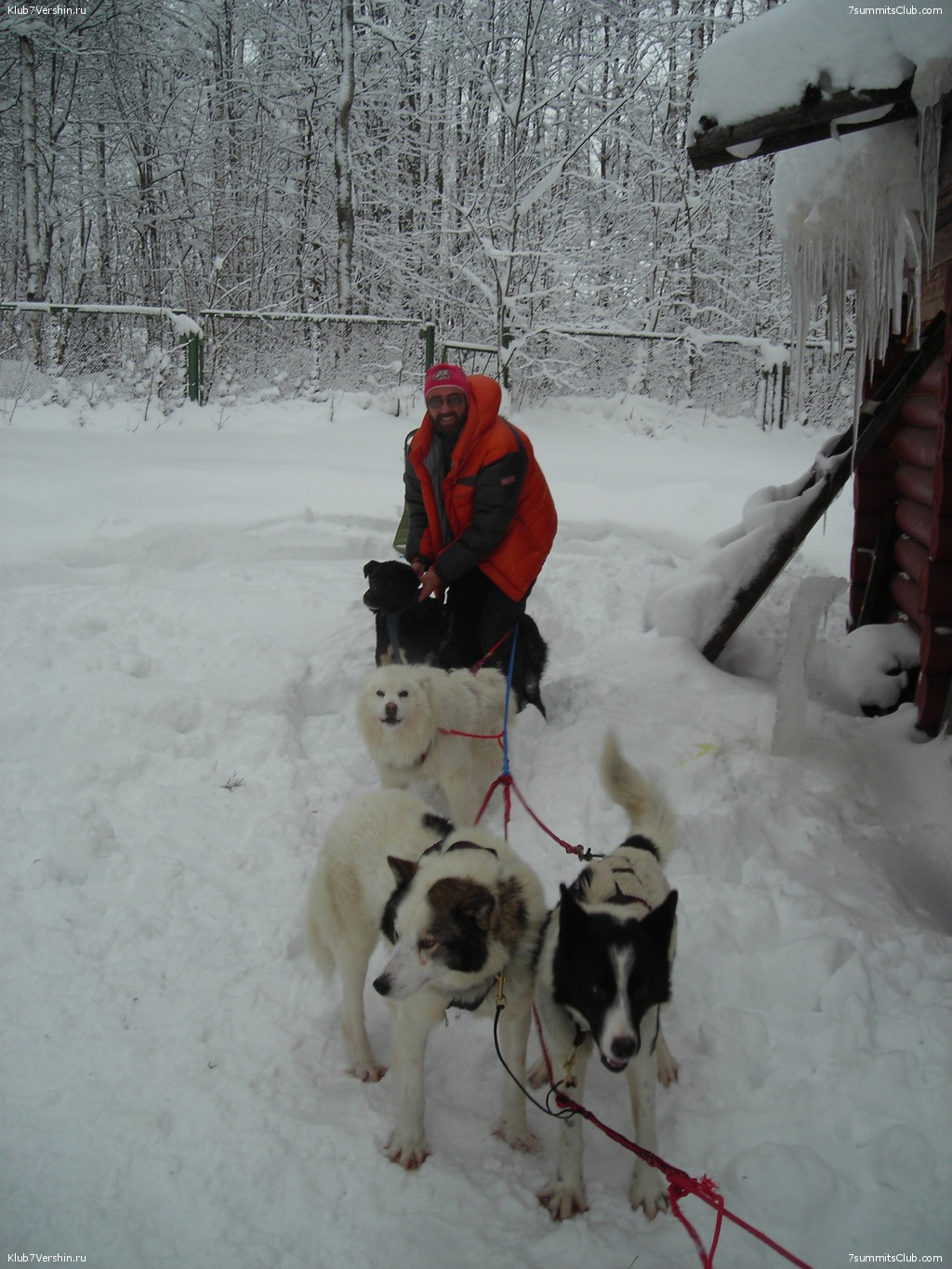 Karelia. Sled Dogs Weekend, photo 60