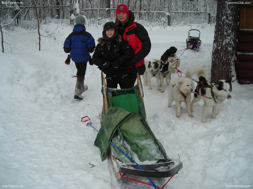 Karelia. Sled Dogs Weekend, photo 40