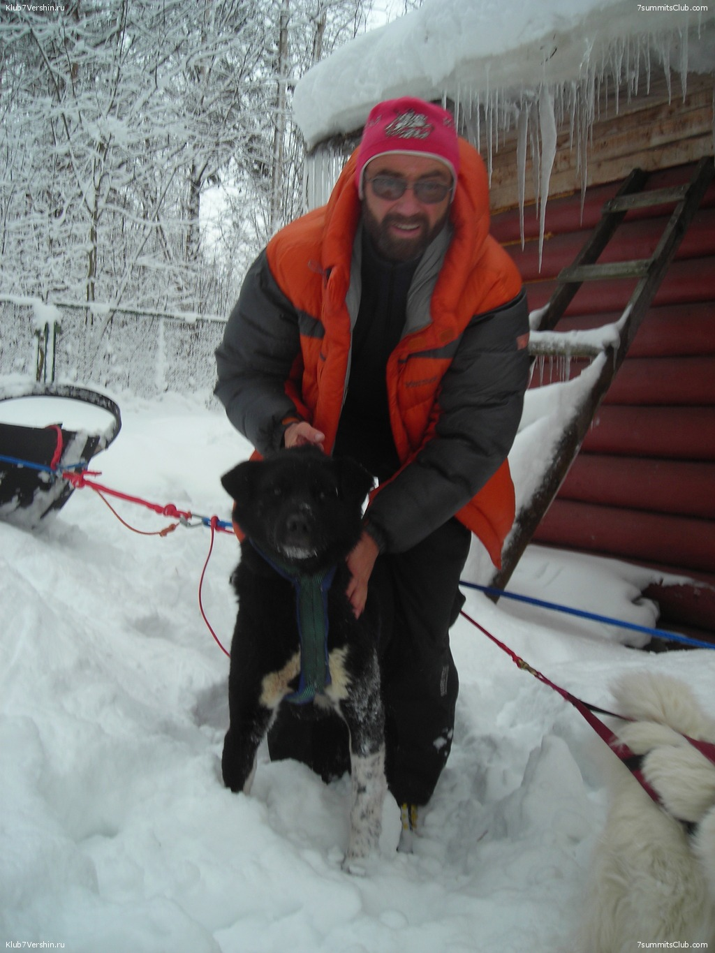 Karelia. Sled Dogs Weekend, photo 61