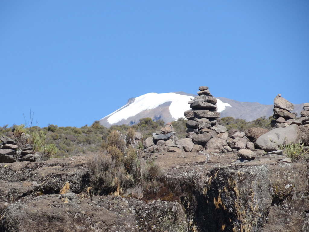 Kilimanjaro 2012. Savelyev, photo 49