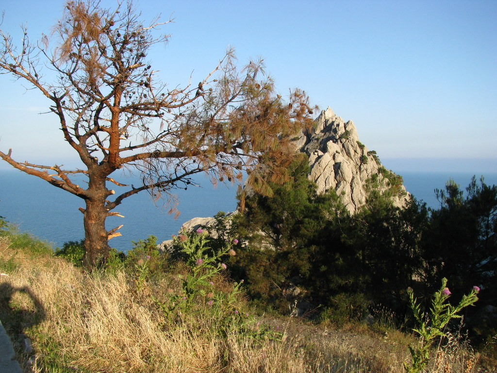 Crimea 2012. Dubinkin, photo 9